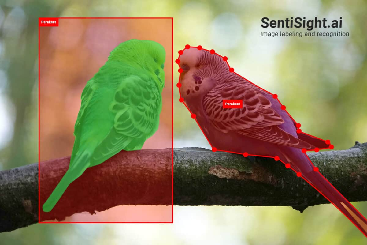 SentiSight.ai: A Platform for Image Labeling and Recognition