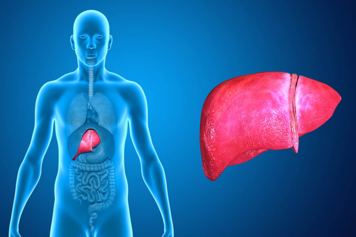 Get Best Liver Function Test in Delhi